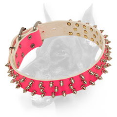 Decorated pink nickel spiked leather dog collar for