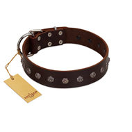 """Graceful Classic"" Mod FDT Artisan Brown Leather Doberman Collar"