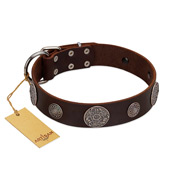 """Flashy Woof"" FDT Artisan Brown Leather Doberman Collar with Chrome Plated Brooches"