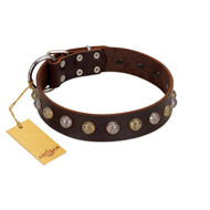 """Gape Buster"" FDT Artisan Brown Leather Doberman Collar with One Row of Studs"