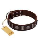 """Spiky Way"" FDT Artisan Brown Leather Doberman Collar with Silver-Like Decorations"