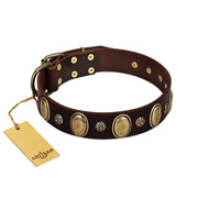 """Bronze Idol"" FDT Artisan Brown Leather Doberman Collar with Eye-catching Ovals and Small Studs"