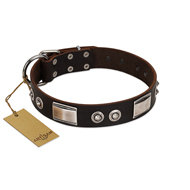 """Baller Status"" FDT Artisan Brown Leather Doberman Collar Adorned with a Set of Chrome Plated Studs and Plates"