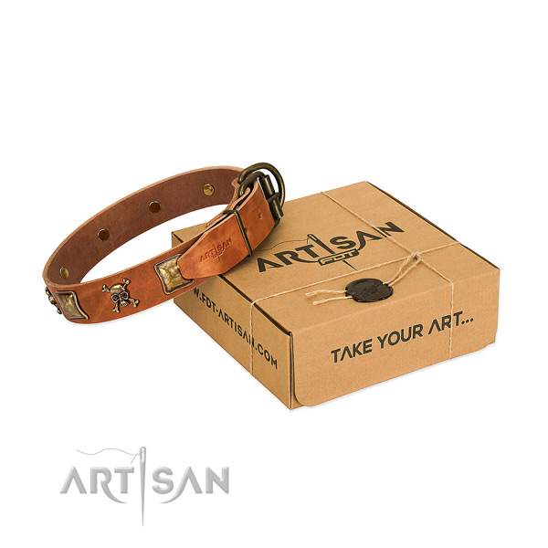 Inimitable natural leather dog collar with corrosion resistant embellishments