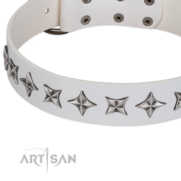 Stylish walking embellished dog collar of quality genuine leather