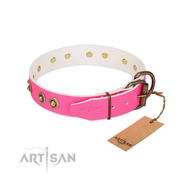 Full grain natural leather dog collar with rust-proof hardware and decorations