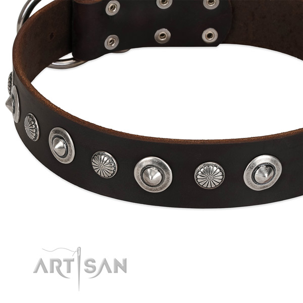 Remarkable embellished dog collar of durable full grain leather