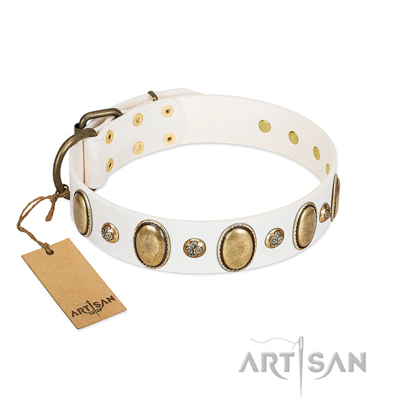 Full grain leather dog collar of reliable material with top notch embellishments