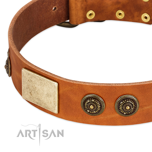 Significant dog collar handmade for your attractive doggie