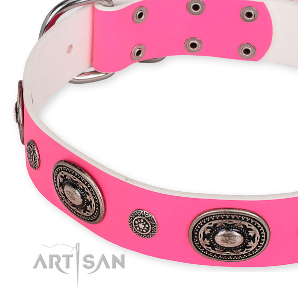 Leather dog collar with awesome strong decorations