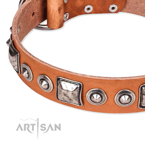 Flexible full grain leather dog collar created for your handsome doggie