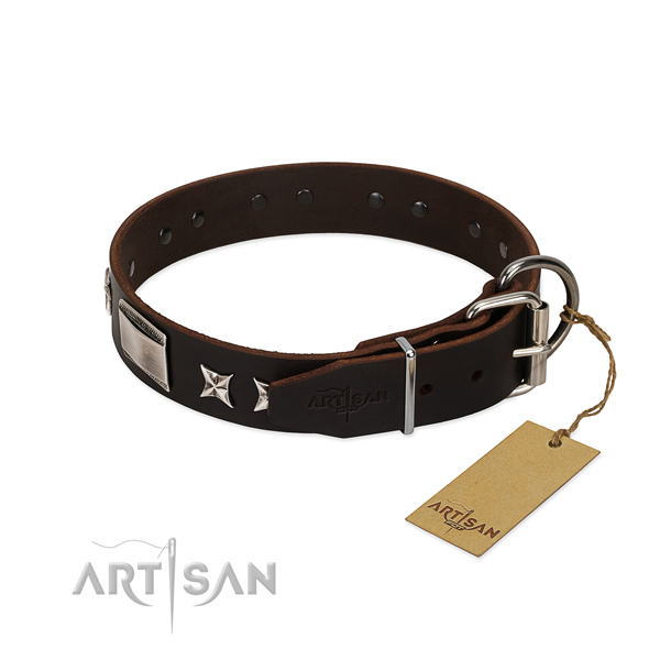 Designer collar of genuine leather for your beautiful dog