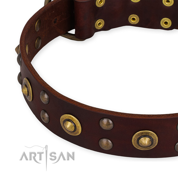 Full grain leather collar with corrosion resistant D-ring for your attractive canine