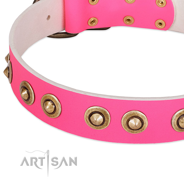 Corrosion proof decorations on genuine leather dog collar for your doggie