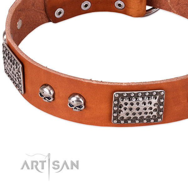 Rust-proof traditional buckle on natural genuine leather dog collar for your four-legged friend