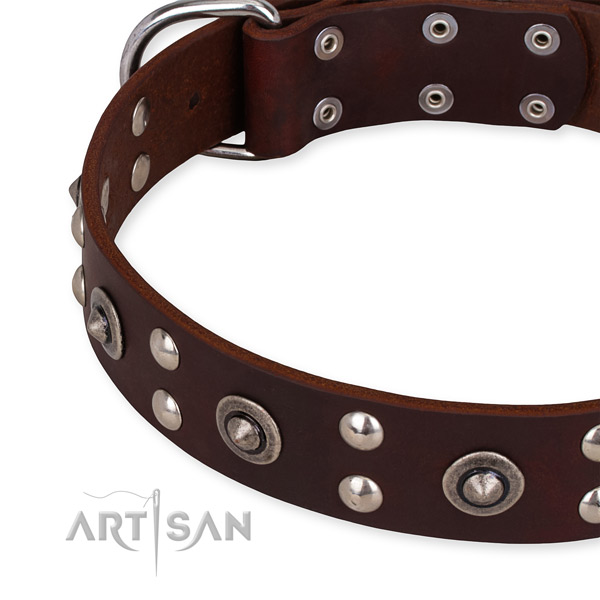 Full grain leather collar with corrosion resistant buckle for your lovely canine