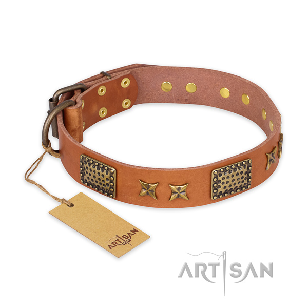 Unique leather dog collar with durable buckle