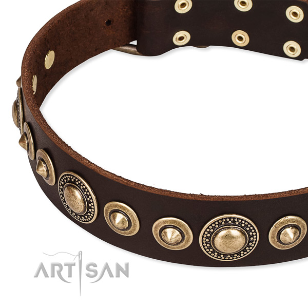 Top rate full grain leather dog collar handcrafted for your impressive pet