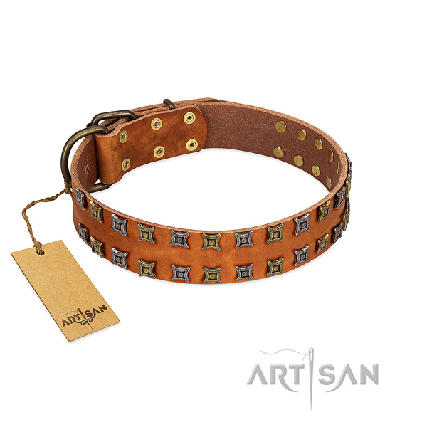 Reliable full grain genuine leather dog collar with studs for your pet