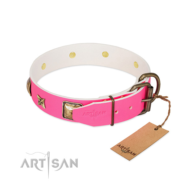 Rust-proof fittings on leather collar for basic training your four-legged friend
