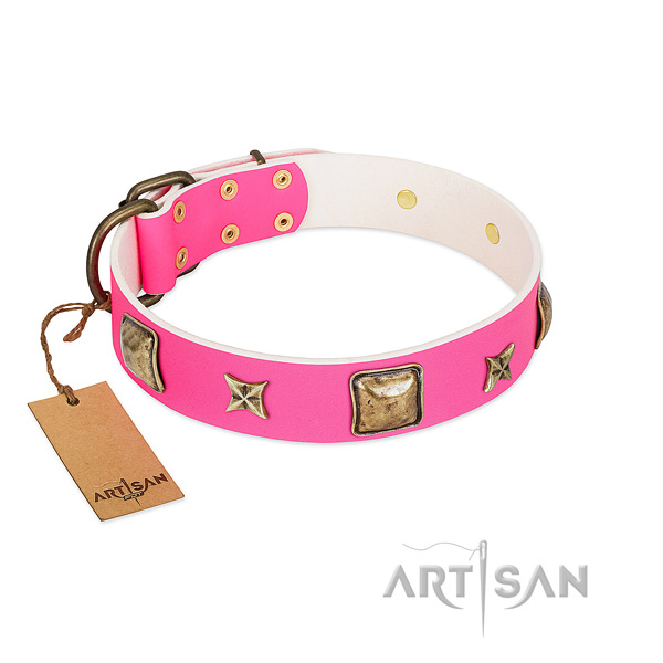 Full grain leather dog collar of top rate material with stylish design decorations