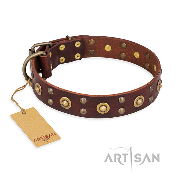 Awesome genuine leather dog collar with rust resistant fittings