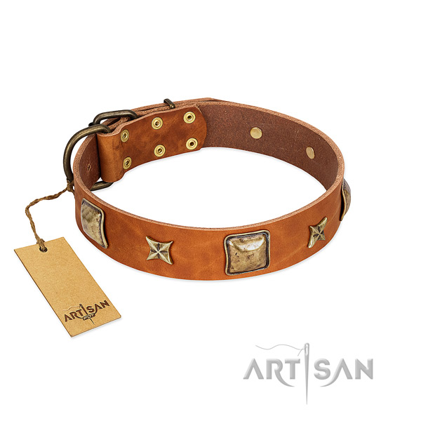 Impressive natural genuine leather collar for your doggie