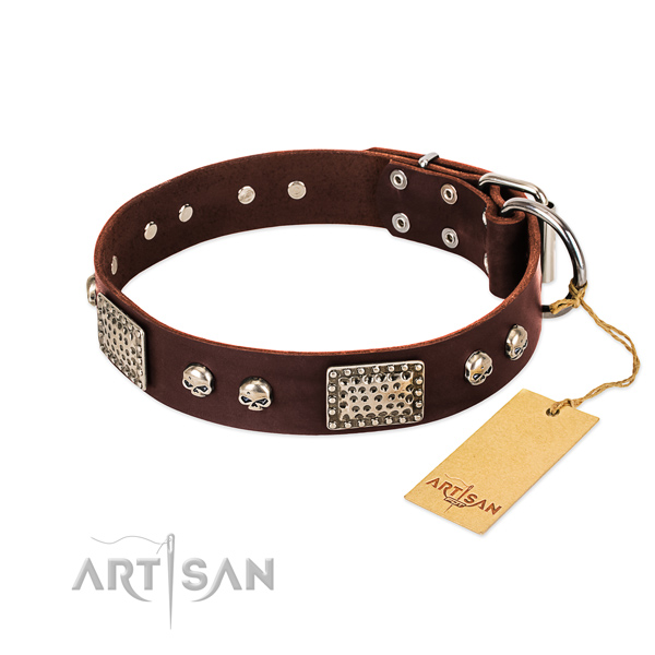 Adjustable genuine leather dog collar for daily walking your canine