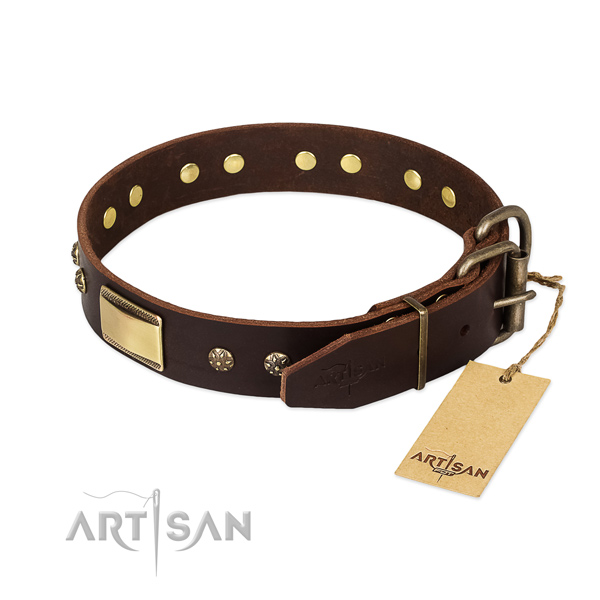 Significant leather collar for your canine
