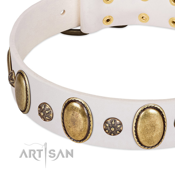 Fancy walking soft to touch leather dog collar with studs