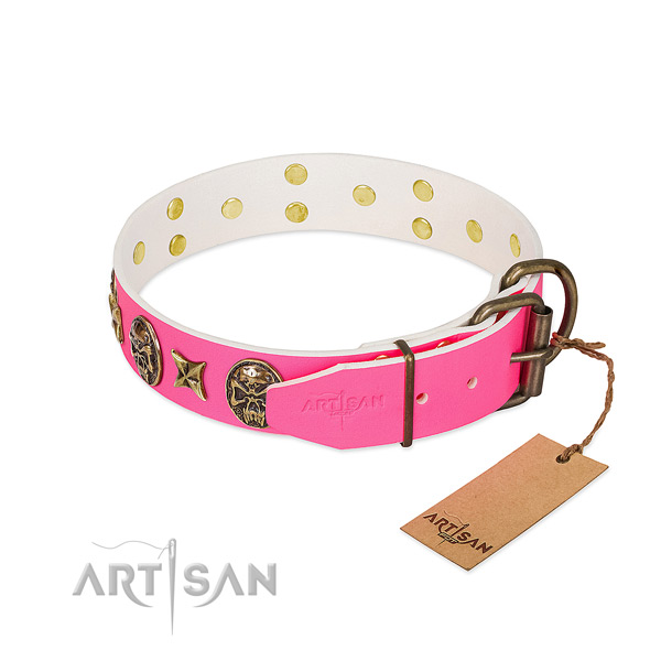 Durable hardware on full grain natural leather collar for fancy walking your pet