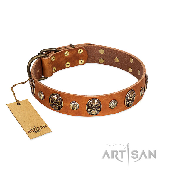 Trendy leather dog collar for fancy walking