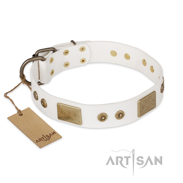 Stylish full grain natural leather dog collar for handy use