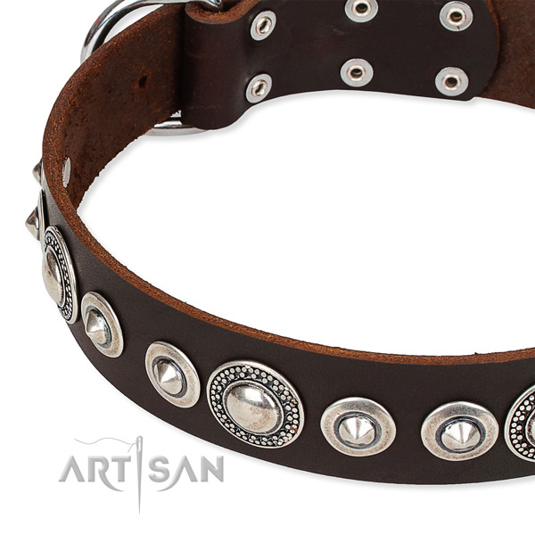 Handy use embellished dog collar of finest quality full grain leather
