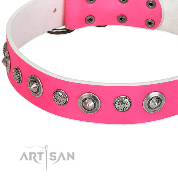 Full grain natural leather collar with corrosion proof buckle for your attractive four-legged friend