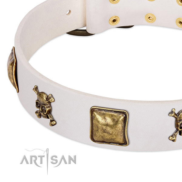 Inimitable full grain leather dog collar with durable embellishments