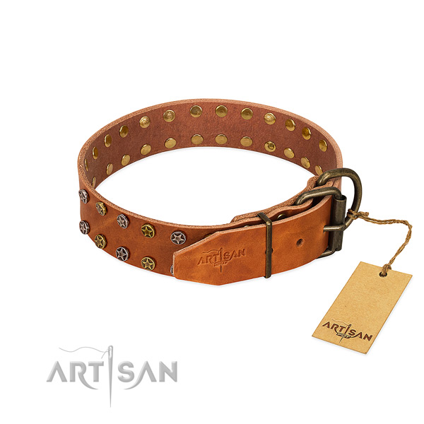 Stylish walking full grain genuine leather dog collar with unusual decorations
