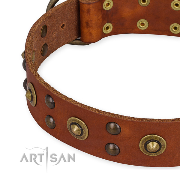 Genuine leather collar with durable D-ring for your lovely doggie