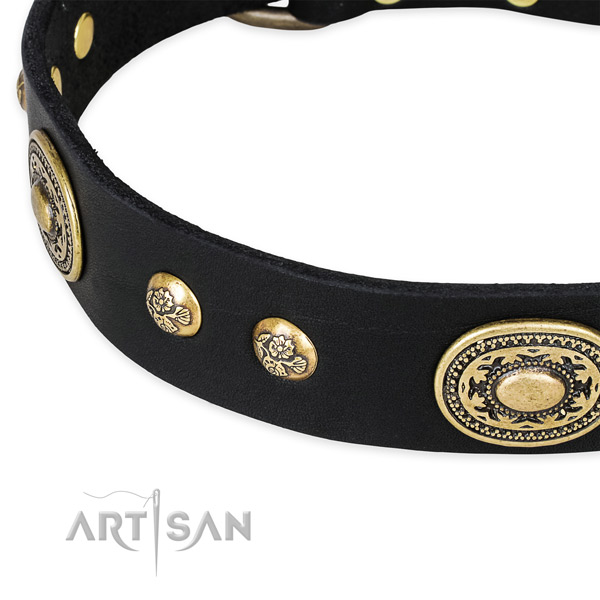 Unusual full grain leather collar for your handsome canine