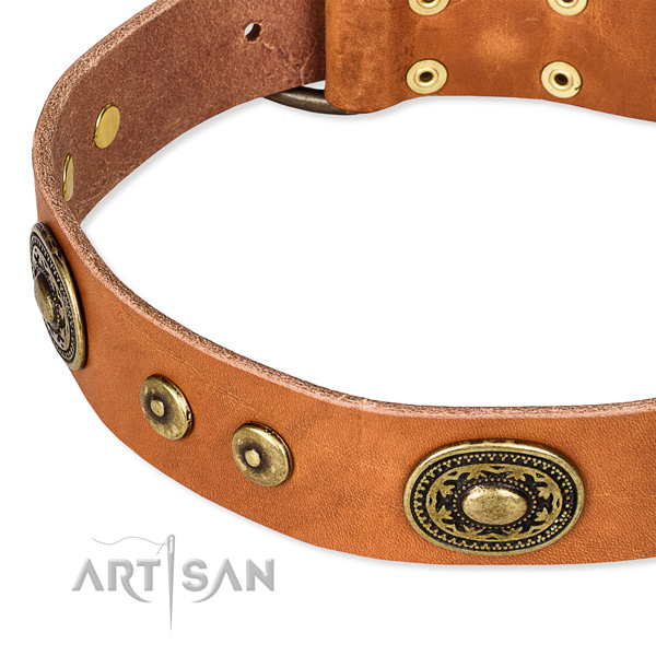 Full grain leather dog collar made of top rate material with embellishments
