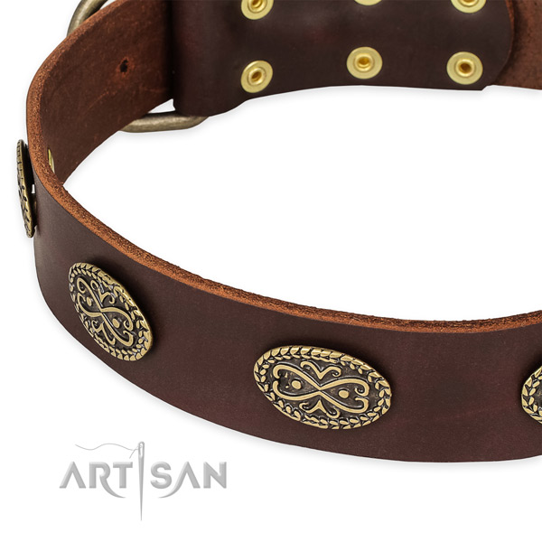 Awesome leather collar for your stylish canine