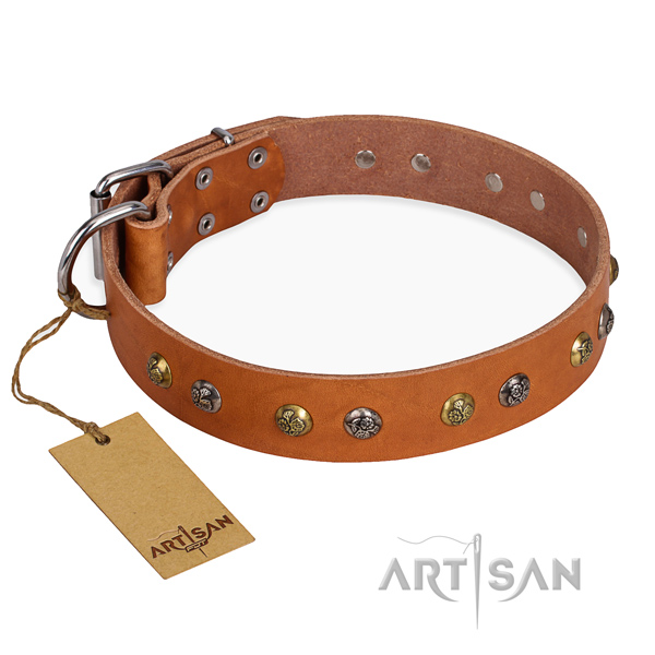 Walking stylish design dog collar with corrosion proof buckle