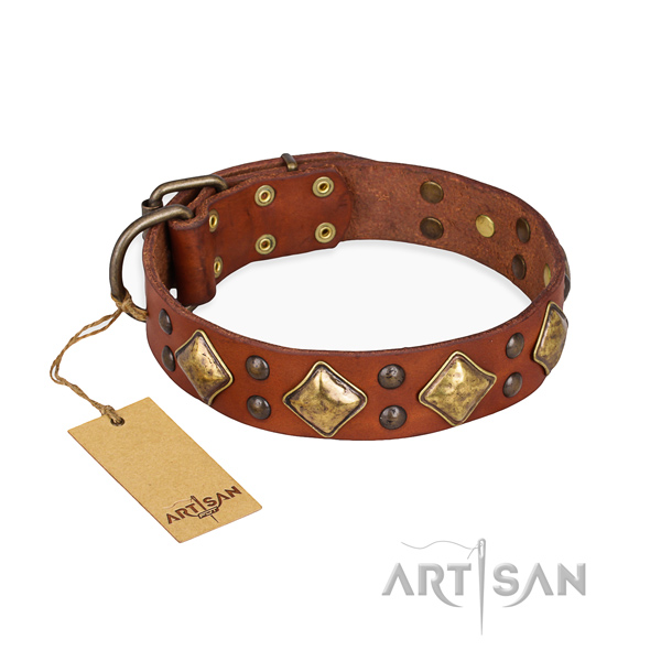 Comfy wearing amazing dog collar with corrosion proof fittings