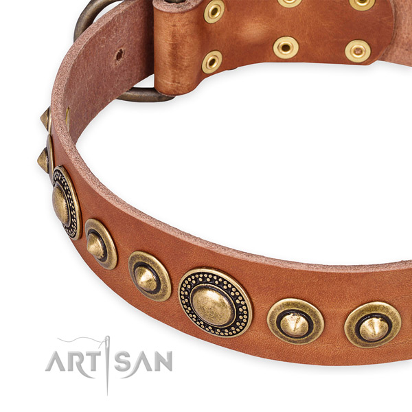 Strong genuine leather dog collar made for your attractive canine
