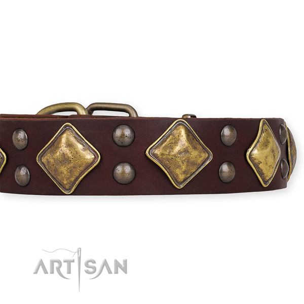 Full grain natural leather dog collar with stunning durable adornments