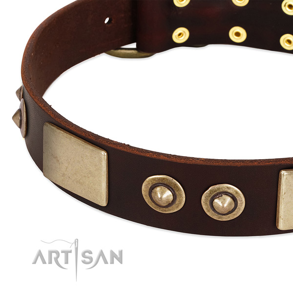 Corrosion resistant decorations on genuine leather dog collar for your doggie