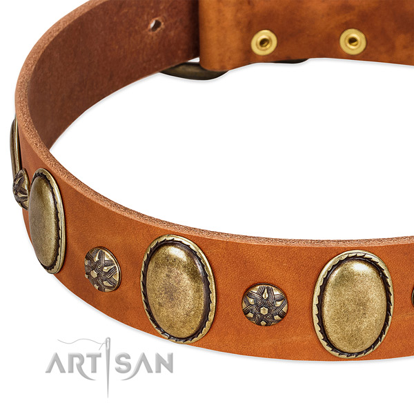 Comfortable wearing flexible full grain leather dog collar