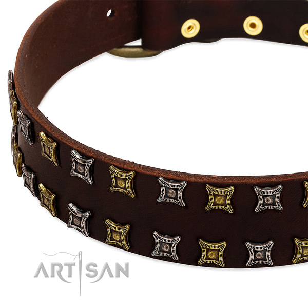 Quality genuine leather dog collar for your handsome doggie