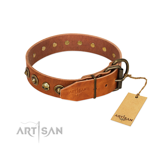 Leather collar with designer adornments for your doggie