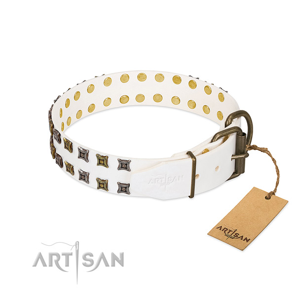 Natural leather collar with remarkable studs for your canine